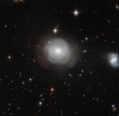A galaxy in bloom  The ghostly shells of galaxy ESO 381-12 are captured here in a image from the NASA/ESA Hubble Space Telescope, set against a backdrop of distant galaxies. The strikingly uneven structure and the clusters of stars that orbit around the galaxy suggest that ESO 381-12 may have been part of a dramatic collision sometime in its relatively recent past.      Credit:  NASA, ESA, P. Goudfrooij (STScI)     Source: http://www.spacetelescope.org/news/heic1516/