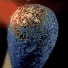 A match lighting | 23 Extremely Freaky Chemical & Physical Reaction GIFs