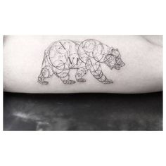 Fine line style tattoo of a bear on the left inner arm.