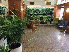 Lobby Astoria Hotel, Medical Spa, Plants, Plant, Planets