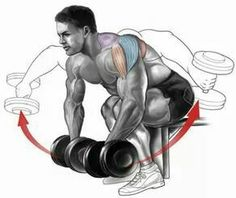Gym Workout Chart, Gym Workout Tips, Weight Training Workouts, Fun Workouts, Deltoid Workout, Bicep And Tricep Workout, Dumbbell Workout, Sports Physical Therapy, Physical Fitness