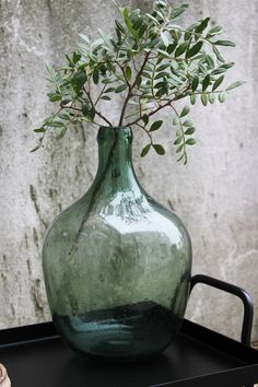 Green Glass bottle Vase + Greenery