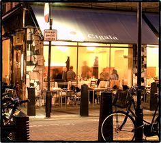Cigala: Spansish (Russel Square)