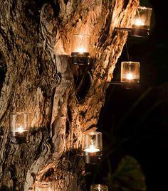 Tree light candles