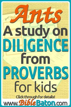 Proverbs Ant Bible Study Craft For Kids