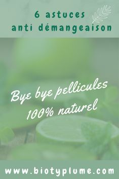 Zero Waste Home, Green Lifestyle, Health, Blog, Diy, Instagram, Hair Conditioner, Natural Treatments, Natural Remedies