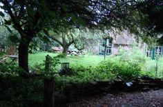 Natuurhuisje in de Wetering