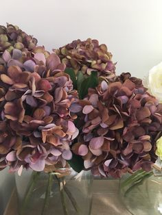 Idea Of Making Plant Pots At Home // Flower Pots From Cement Marbles // Home Decoration Ideas – Top Soop Hydrangea Bouquet Wedding, Fall Wedding Flowers, Hydrangea Flower, Fall Flowers, Dried Flowers, Flower Pots, Hydrangeas, Mauve, Late Summer Flowers