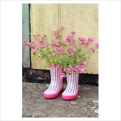 GAP Photos - Garden & Plant Picture Library - Step by step of planting a pair of recycled kids wellies with Diascia 'Little Dancer' - The finished container planting on a rustic doorstep - GAP Photos - Specialising in horticultural photography