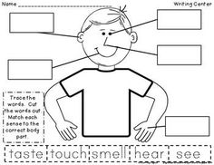 Apple five senses chart. After adding descriptive words, use the ...