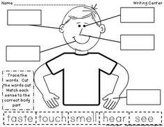 5 senses on pinterest my five senses 5 senses activities and 5 sen. Black Bedroom Furniture Sets. Home Design Ideas