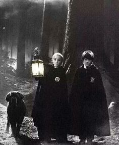 Draco Malfoy and Harry Potter in the Forbidden Forest. my father will hear about this sending kids in the forbidden forest Harry James Potter, Harry Potter Pictures, Harry Potter Universal, Harry Potter World, Harry Potter Characters, Harry Potter Hogwarts, Draco Malfoy, Hermione Granger, Harry Draco