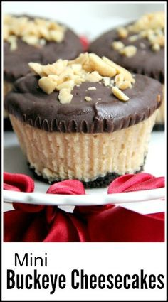 Check out these cute mini buckeye cheesecakes from Snappy Gourmet! They're gorgeous little layered treats of chocolate graham cracker crust, blended peanut butter, melted semi-sweet chocolate and crushed peanuts. Chocolate-dipped peanut butter is Individual Desserts, Bite Size Desserts, Köstliche Desserts, Delicious Desserts, Dessert Recipes, Sweet Desserts, Cupcake Recipes, Healthy Desserts, Drink Recipes