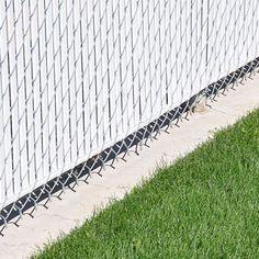 Fence Border Concrete Edging Landscaping Fence