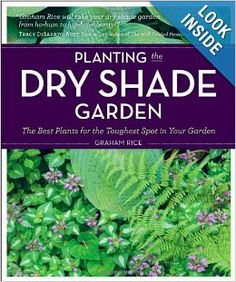 Planting the Dry Shade Garden: The Best Plants for the Toughest Spot in Your Garden: Graham Rice: 9781604691870: Amazon.com: Books