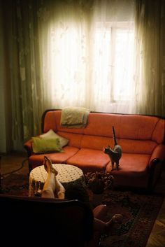 Marija Strajnic - living room