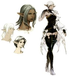 View an image titled 'Elezen Female Art' in our Final Fantasy XIV: A Realm Reborn art gallery featuring official character designs, concept art, and promo pictures. Character Model Sheet, Female Character Design, Character Design References, Character Concept, Character Art, Concept Art, Tumblr Hipster, Final Fantasy Xiv, Annie Leibovitz
