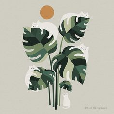 Cats and Plants Illustrations by Lim Heng Swee