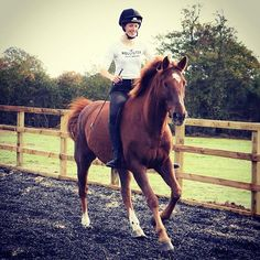 Junior Rider Ella Lucas taking #nostirrupsnovember to the extreme! Check out her first #blog at harryhall.co.uk/blogs