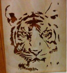 tiger saget 23/1-15
