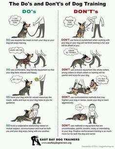 Dog training made easy http://www.bestdogobedienceideas.com/