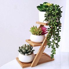 100 Beautiful DIY Pots And Container Gardening Ideas diy garden plants 100 Beautiful DIY Pots And Container Gardening Ideas Summer Deco, Artificial Succulents, Planting Succulents, Succulent Plants, Cactus Plants, Faux Succulents, Cacti, Indoor Succulents, Small Cactus