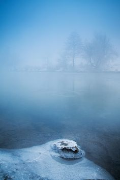 Feeling Blue by Serban Bogdan on Art Limited Love Blue, Blue And White, Fog Photography, Snow Forest, World View, Shades Of Blue, The Great Outdoors, Mists, Winter