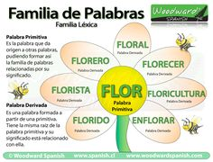 Familia de palabras en español con ejemplos High School Spanish, Elementary Spanish, Ap Spanish, Spanish Grammar, Spanish Vocabulary, Spanish Words, Spanish Teacher, Spanish Classroom, Spanish Lessons
