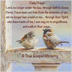 Daily Prayer Lord, no longer under the law, through faith in Jesus Christ, I have been set free from the dominion of sin.. sin no longer has a hold on me... through Your Spirit, who lives inside of me, I can say no to ungodliness and walk in Your ways... #dailyprayer #atruegospelministry #morningprayer #quote #seekgod #godsword #godislove #gospel #jesus #jesussaves #teamjesus #LHBK #youthministry #preach #testify #pray #rollin4Christ