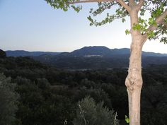 #lecrin #valley #pinos del #valle from #beznar at twilight