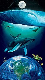 One of my favourite artists, Wyland