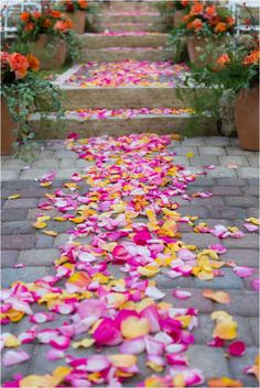 #pink and yellow petal aisle ... Wedding ideas for brides & bridesmaids, grooms & groomsmen, parents & planners ... https://itunes.apple.com/us/app/the-gold-wedding-planner/id498112599?ls=1=8 … plus how to organise an entire wedding, without overspending ♥ The Gold Wedding Planner iPhone App ♥