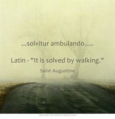 ...solvitur ambulando..... Latin - It is solved by walking. This is how I think of my pilgrimage on the camino (the Way of Santiago de Compostela).-Ginn