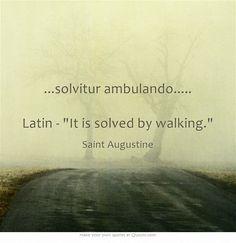 ...solvitur ambulando..... Latin - se soluciona caminando.