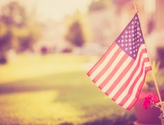 An American flag is pictured, sitting in a flower pot outside of a suburban home