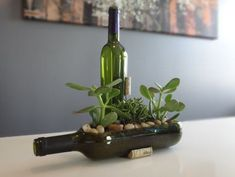 An old, but precious wine bottle can be cut on the side, laid down, becoming a flower bed. It's personalized, original and natural all at once.