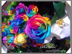 Rainbow rose by NessaSaelind.deviantart.com on @deviantART