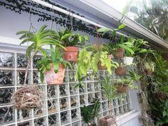 South Florida Secret Garden #11