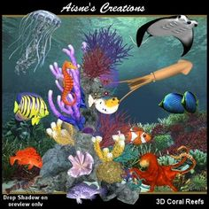 3D Coral Reefs Graphics Pack $6.50