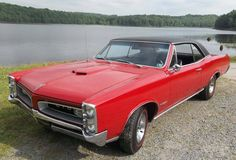 Displaying 1 - 15 of 238 total results for classic Pontiac GTO Vehicles for Sale. Pontiac Gto For Sale, Pontiac Cars, Classic Cars Usa, 67 Gto, Collector Cars, Other Woman, Cars For Sale, Dream Cars, Jeeps