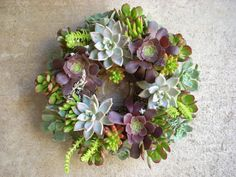 Succulent Centerpiece Weddings Holidays 10 inch by SucculentSalon