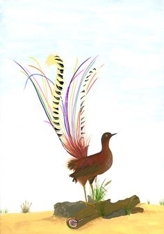 """Happy Little Lyre Bird""  gouache on paper - by Carrie Marill"