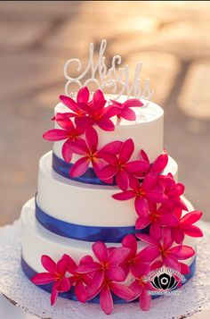 White Ercream Cake With Hot Pink Plumeria Blossoms Royal Blue Ribbon Decor
