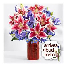 Search for joyful bouquet with square glass vase Thank You Gift For Parents, Best Mothers Day Gifts, Thank You Gifts, Blue Iris Flowers, Square Glass Vase, Online Flower Delivery, Cut Flower Garden, Order Flowers Online, Amazing Flowers