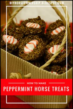 DIY How To Make Homemade Peppermint Horse Treats