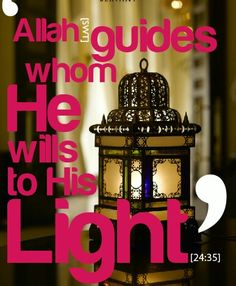 Allah guides whom He wills to His Light.