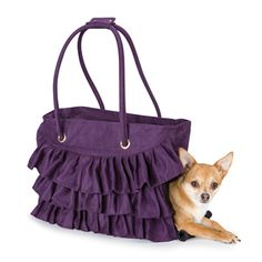 chihuahua clothes i want this bag Chihuahua Art, Chihuahua Clothes, Teacup Chihuahua, Puppy Clothes, Airline Pet Carrier, Dog Purse, Pet Carriers, Pet Accessories, Dog Life