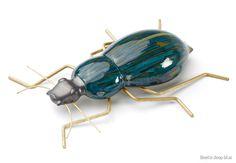 Beetle | Mambo