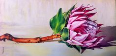 Acrylic on canvas by Molawrenson Protea Art, Protea Flower, Colorful Pictures, Art Pictures, South African Artists, King Art, Abstract Canvas Art, Ceramic Flowers, Nature Paintings