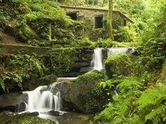 Las 12 nuevas Reservas de la Biosfera http://www.consumer.es/web/es/medio_ambiente/naturaleza/2013/06/10/216987.php